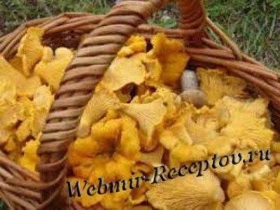 Сушение грибов